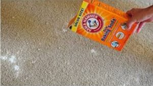 Dallas Carpet Cleaning Tips